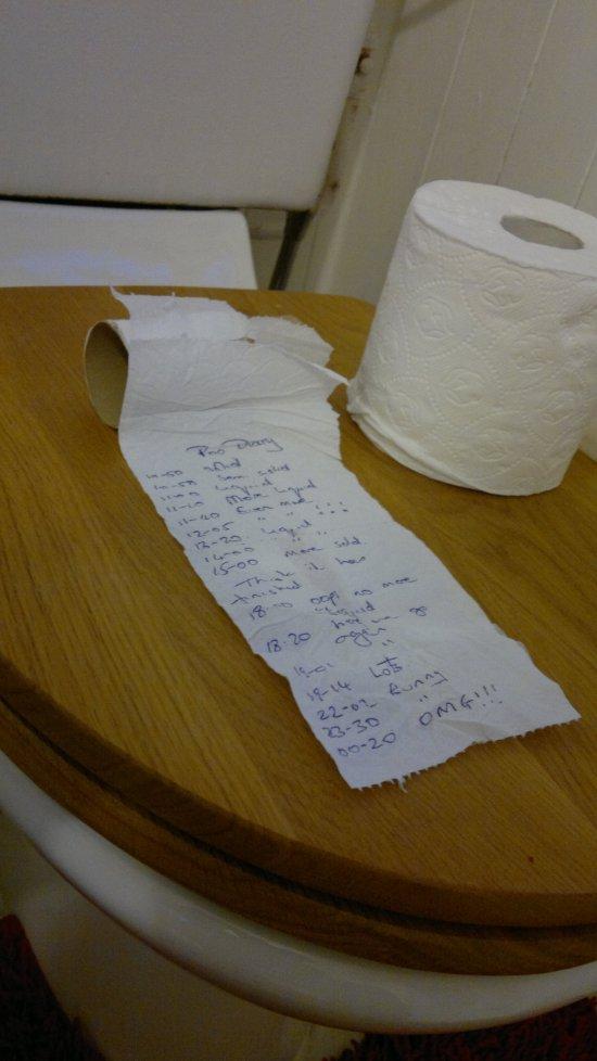my poo diary